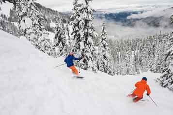 Ski-Whistler-Powder