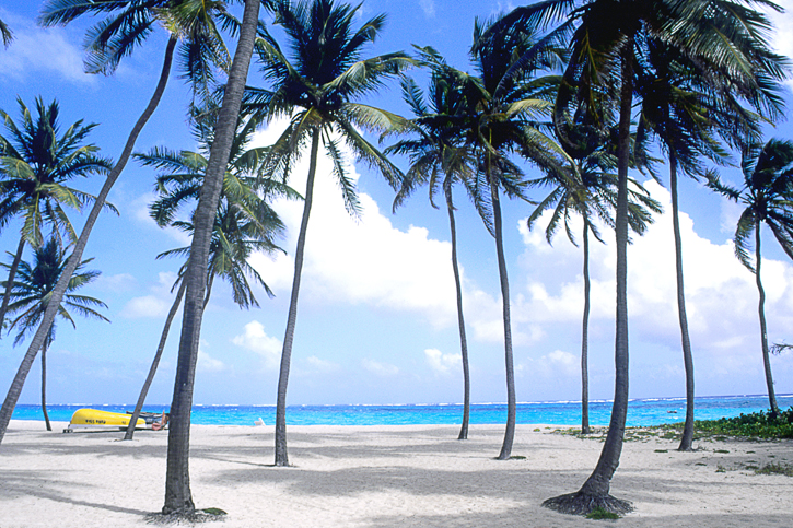 Windies_barbados_bathsheba