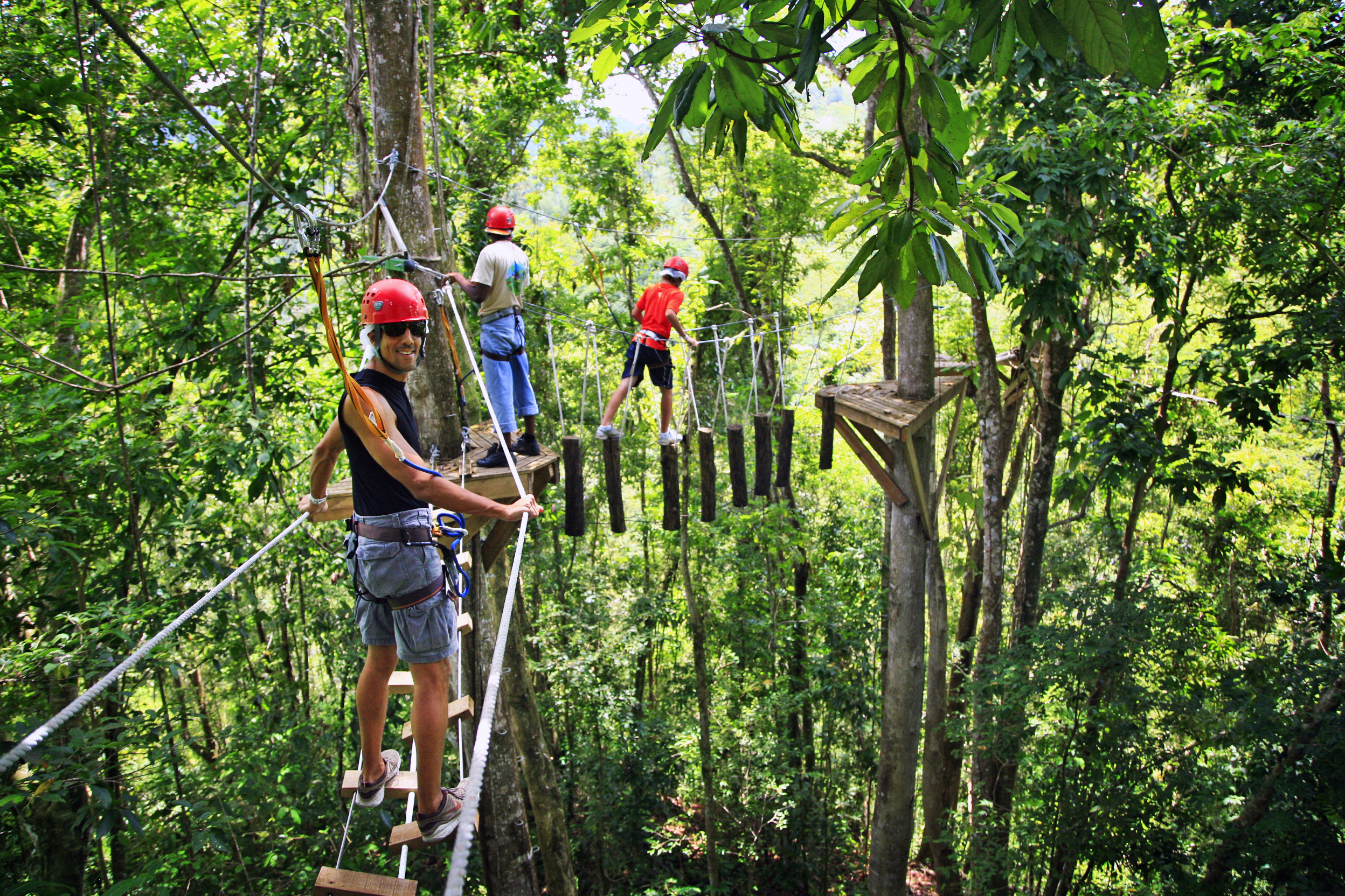 Rainforest canopy adventures